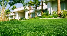 SYNLawn of Nevada offers synthetic and artificial grass for indoor putting greens, play areas or backyards.