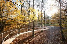 Tetsuo Kondo Architects · A Path in the Forest. Tallin, Estonia