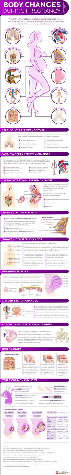 Pregnancy - Popular Health & Fitness Pins on Pinterest