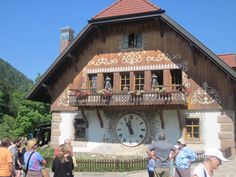 breisach, germany | BREISACH, GERMANY: Part 1, Trip into the Forest