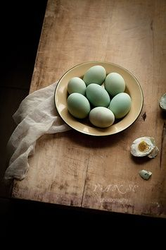 Still life with robin's eggs