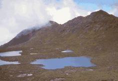 PARQUE NACIONAL LA AMISTAD - COSTA RICA - CHILE POST™