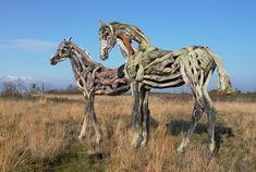 Heather Jansch - Driftwood horses, la raíz del caballo salvaje ~ NQ
