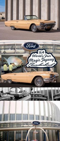 1964 Ford Thunderbird Convertible 1964 Ford, Ford Thunderbird, Palomino, Automatic Transmission, Cars For Sale, Convertible, Classic Cars, Cars For Sell, Vintage Cars