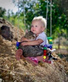 Baby and Cat on Swing