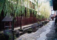 Gunjo Hachiman, Gifu 岐阜の郡上八幡