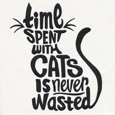 A must-have for any cat lover, this witty design is perfect for totes, pillows, and more. #embroiderydesigns