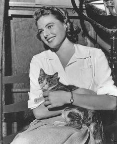 Ingrid Bergman and cat