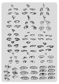 Eye Reference. by *moni158 on deviantART