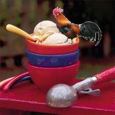 Snickerdoodle-doo Ice Cream