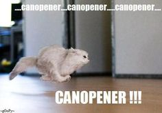 I Never had a cat that didn't run at the sound of a can opener, even the ones that ate Dry food!