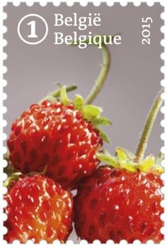 Forgotten fruit: Woodland Strawberry
