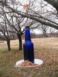DIY Bottle Bird Feeder!!