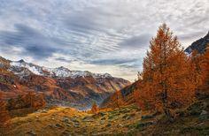 golden valley by Ennio Pozzetti on 500px
