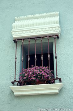 Flowers on a Window Sill, Cuernavaca, Morelos, Mexico