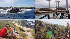 Excursión en Islas Galápagos - Tour de Bahía en Puerto Ayora http://www.southamericaperutours.com/southamerica/12-days-wonders-of-machu-picchu-and-galapagos.html