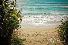 Coral Bay, Paphos, Cyprus Nektarios Photography