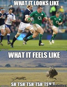 What it looks like. What it feels like. Rugby humour.