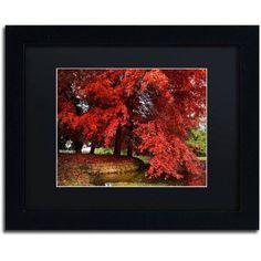Trademark Fine Art October Canvas Art by Philippe Sainte-Laudy Black Matte, Black Frame, Size: 16 x 20