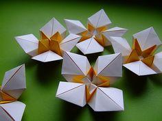origami flowers | da evi binzinger