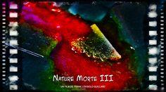 Nature Morte III - De Rerum Natura - Lucrèce