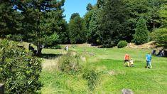 National Trust, Days Out, Dolores Park, Travel, Viajes, Destinations, Traveling, Trips