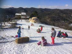 Cette école Montessori cultive la joie d'apprendre… en pleine nature! – Eveil et Nature Outdoor Learning, Outdoor Play, Montessori, Outdoor Classroom, Dolores Park, Teaching, Travel, Joy, Outdoor Games