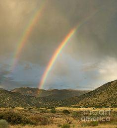 Double Rainbow In Desert by Matt Tilghman