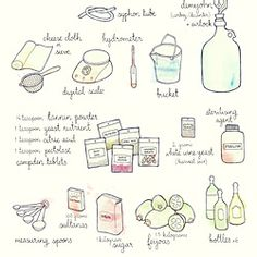 Make your own feijoa wine! Check out this great recipe, together with cute illustrations of the ingredients. when our feijoas get big enough :-) Drinks Alcohol Recipes, Fruit Recipes, Wine Recipes, Alcoholic Drinks, Cocktails, Pineapple Guava, Wine Yeast, Wine Education, Booklet Design