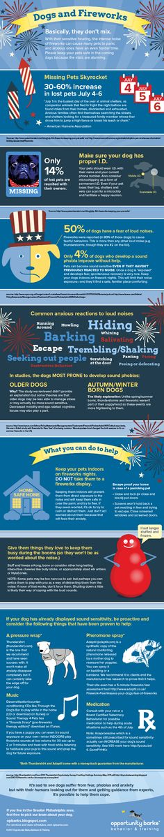 Dogs and Fireworks Don't MIX! Why we haven't been able to celebrate July in years! Dogs And Fireworks, Dog Safety, Safety Tips, Summer Safety, Boxer And Baby, Happy Puppy, Losing A Pet, Animal Quotes, Pet Health