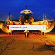 To be able to go online & book a ticket to fly home. .Priceless...   #qatarairways✈️ #qatarairways #flyinghome #flyinghomesoon #internationalflights #airways #bookflights #bestairline #viennaairport #aucklandairport #sydneyairport #dohaairport #travelhome #flyqatar #thankyou❤️  Go Online, Books Online, International Flights, Priorities, Ticket, To Go, Aircraft, Travel, Aviation
