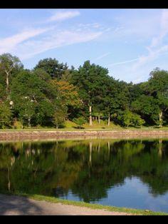 Jamaica Pond, Boston MA