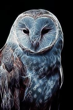 Fractal Owl by ShaylerArt on DeviantArt Fractal Design, Fractal Art, Owl Pictures, Air Brush Painting, Native American Art, Bird Art, Beautiful Birds, Cute Drawings, Amazing Art