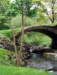 turfed bridge
