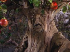 *MAGICAL APPLE TREE ~ The Wizard of Oz, 1939 These trees were the scariest thing after the wicked witch & the tornado, they just creeped me out! Wizard Of Oz Characters, Wizard Of Oz Movie, Wizard Of Oz 1939, Tree Faces, Land Of Oz, Yellow Brick Road, Judy Garland, Wicked Witch, Apple Tree