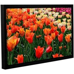 ArtWall Kevin Calkins Tulips in Spring Gallery-Wrapped Floater-Framed Canvas, Size: 12 x 18, Green