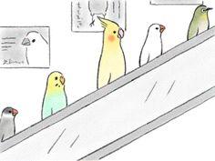 ことりエスカレーター - Works of Tsuji Saori