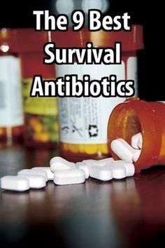 Best Survival Anti-Biotics