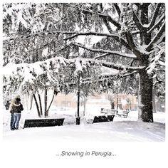 Snowing in Perugia