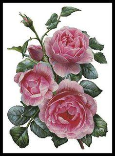 Artecy - Pretty pink rose