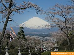 Mount Fuji during spring time. Photo taken at Heiwa Park last April 7. Check out the ultimate guide to see Mount Fuji here: http://asiatravelbug.com/blog/mount-fuji-guide/