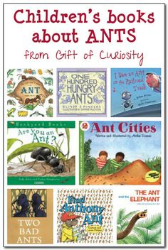 A review of 8 books about ants for kids - both fiction and non-fiction books are reviewed. #ants #kbn || Gift of Curiosity