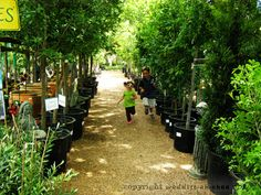 Natural Gardener field trip in nearby TX cities