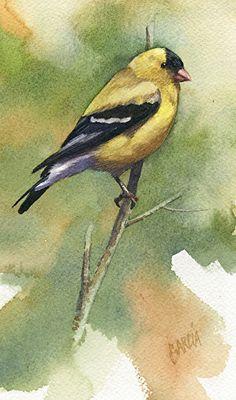 American Goldfinch by Joe Garcia Watercolor ~ 7 x 4.25