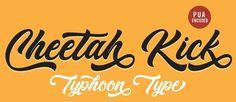 135+ Best Script Fonts in 2020. Free and Premium #free #retro #script #fonts Best Script Fonts, Script Typeface, Modern Script Font, Modern Fonts, Wedding Script, Slab Serif, Creative Company, Retro, Free