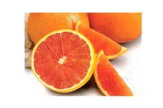 Scarlet Citrus Fruit