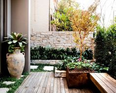 Paddington – Bringing Outside In - Growing Rooms - Sydney Landscape Design Experts Side Garden, Garden Beds, Garden Spaces, Small Gardens, Outdoor Gardens, Courtyard Gardens, Courtyard Ideas, Courtyard Design, Coastal Gardens