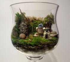 ガラスの器や鉢植えなどに植物を寄せ植えする<テラリウム>が今とっても人気です。容器に土と観葉植物を植えるだけでなく、カラーの砂や石、小さなフィギュアなどを使って、オリジナルの<テラリウム>作りを楽しむ人が増えています。今回は<テラリウム>の作り方、ユニークなテラリウムをご紹介します。
