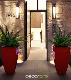 Outdoors: enchanting modern entrance gate design with concrete and wall mounted lighting ideas modern house design ideas home exterior decorating ideas Modern Entry, Modern Entrance, Modern Front Door, Entrance Design, Entrance Gates, House Entrance, Front Entry, Front Doors, Front Gates