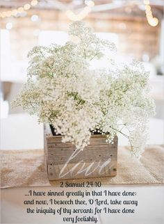 Another great example of Baby's Breath in a chic wedding. Simple wooden boxes with bouquets of Baby's Breath make for elegant and eye-catching arrangements - not to mention affordable and easy to assemble! I definitely want baby's breath in my wedding Rustic Wedding Centerpieces, Diy Centerpieces, Wedding Decorations, Vintage Decorations, Table Decorations, Centerpiece Flowers, Diy Decoration, Decor Wedding, Babies Breath Centerpiece